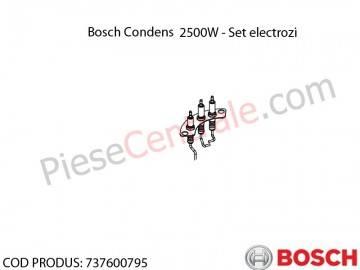 Poza Electrozi aprindere + ionizare Bosch Condens 2500W