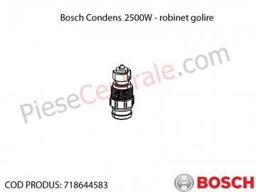 Poza Robinet de golire centrala termica Bosch Condens 2500W
